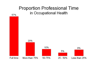 "View ""Professional Time"" Graphic"